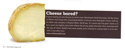 Food Magazine Cheese Piece